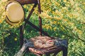 Sweet pie on a chair shot in nature