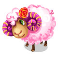 Sweet pink sheep with large spiral horns. Vector