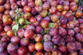 Sweet plums many in the basket Royalty Free Stock Photography