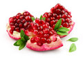 Sweet pomegranate with leafs Stock Photo
