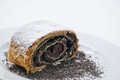 Sweet poppy strudel with powder sugar on white plate, product photography for bakery or patisserie