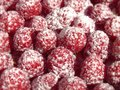 Sweet raspberries Stock Photography