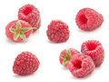 Sweet raspberry Stock Photo