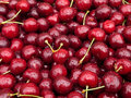 Sweet red cherry Stock Photo