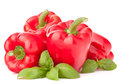 Sweet red pepper and basil leaves still life isolated on white background cutout Stock Images