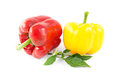 Sweet red and yellow peppers with leaves Royalty Free Stock Photo