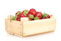Sweet ripe strawberries in crate Stock Photo