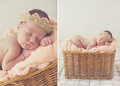 Sweet sleeping newborn baby in wicker basket-collage Royalty Free Stock Photo