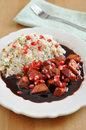 Sweet and sour cranberry chicken with pomegranate Royalty Free Stock Photography