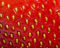 Sweet  strawberry. Close-up. Stock Photos