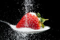 Sweet strawberry with sugar granules pouring over a on a spoon a black background Stock Images