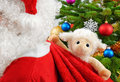 Sweet stuffed animal in Santa's bag Stock Photos