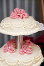 Sweet wedding cake Stock Photography