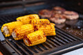 Sweetcorn cooking on a barbecue Royalty Free Stock Images