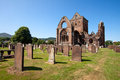 Sweetheart abbey dumfries and galloway scotland is a ruined cistercian monastery founded in by lady dervorgilla in memory of her Stock Photo