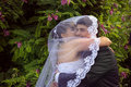 Sweethearts embracing under bride s veil background Royalty Free Stock Images