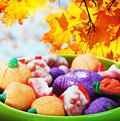 Sweets and candies for the holiday halloween on a background of leaves sky Royalty Free Stock Images