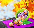 Sweets and candies for the holiday halloween on a background of leaves sky Stock Photography