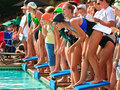 Swim Meet Competition Teen Girls Royalty Free Stock Photo