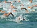 Plávať závodné na