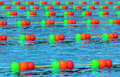Swiming pool a professional swimming with colourful ball line Stock Images