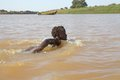 Swiming in the river ethiopian man are omo at omorate village near ethiopian border with kenya Royalty Free Stock Photo