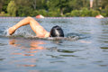 Swimmer doing forward crawl swimming stroke in a pool Royalty Free Stock Photos