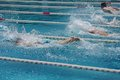 Swimmer freestyle in the outdoor swimming pool Stock Photo