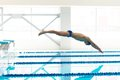 Swimmer jumping from starting block i young muscular in a swimming pool Royalty Free Stock Image