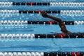 Swimmer in pool lane Royalty Free Stock Photo