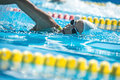 Swimmer in the swim pool Royalty Free Stock Photo