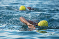 Swimmers churning up the water two swimmers in races in triathlon Royalty Free Stock Photo