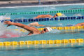 Swimmers competing in the meter freestyle in the swimming national championships in the city of solo central java indonesia Royalty Free Stock Image