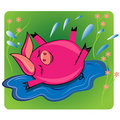 Swimmin de porc chez l'animal de puddle.cartoon   Image stock