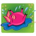 Swimmin del maiale nell'animale di puddle.cartoon   Immagine Stock