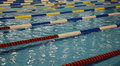 Swimming competition Stock Photography
