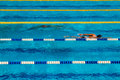 Swimming competition in the pool stock photos Royalty Free Stock Photo
