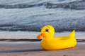 Swimming duck rubber ring duck swim ring on the beach Stock Photos