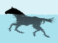 Swimming horse editable vector illustration of a with unrippled silhouette included Royalty Free Stock Photography
