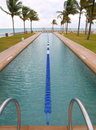 Swimming lap pool on the beach Stock Photos