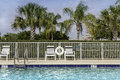 Swimming pool against palms in south florida Stock Images