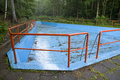 Swimming pool drained in the forest Royalty Free Stock Image