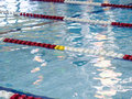 Swimming pool lane ropes Stock Photo