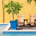 Swimming pool and loungers in the caribbean island of curacao Stock Photography