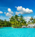 Swimming pool with palm trees and blue sky surrounded by lush tropical plants over cloudy Royalty Free Stock Images