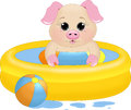Swimming pool piglet an illustration featuring a pig in a paddline Stock Images
