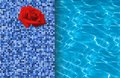 Swimming pool and red rose on tile ideal for backgrounds Royalty Free Stock Image