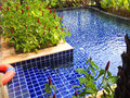Swimming pool with stair in the garden Royalty Free Stock Photo