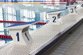 Swimming Pool Starting Blocks Royalty Free Stock Photo