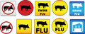 Swine Flu Signs Stock Photography